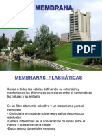 Membrana Plasmatica - Dra. Gil