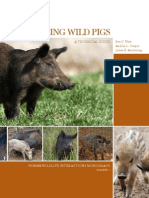 Managing Feral Pigs