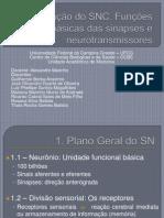 Organização do SNC