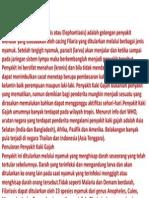 Web Penyakit Kaki Gajah Filariasis Sastaviyana Yuliangga
