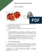 apuntes cardiología
