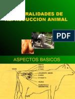 CLASE REPRODUCCION PALMAS2