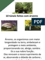10 Tuneis Feitos Com Arvores (2)