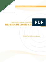 Lopez Diretrizes Projetos
