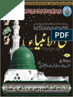 Nabi ul Anbia  14th sadi k siyasi leaders ki Nazar main by sufi Muhammad Allah Ditta