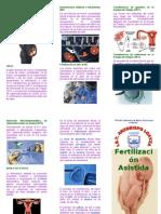 Triptico_Fertilización Asistida
