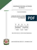 Tesis Geomecanica Aplicada a YNF