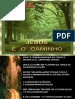O CAMINHO DO GETSÊMANI