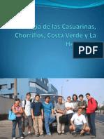 Geologia de Las Casuarinas Chorrillos Costa