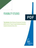 2. Teema_Feasibility Studies