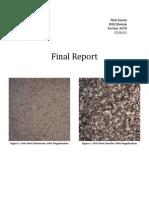 E10-MSE Final Report