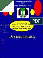 Cancer de Bexiga Imunologia