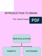 01-Intoduction to Brain