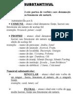schema_substantivul