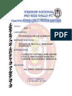Informe de Practica de Hidrolisis Enzimatica (Tecnologia de Los Alimentos III)