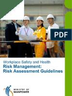 Risk Assessment Guidelines