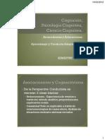 Psicologia Cognitiva Antecedentes 2012