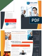Column Consultancy & Co - Profile