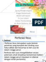 Presentation1 Peri