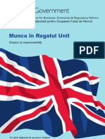 Dg Guide for Romanian Workers 171451