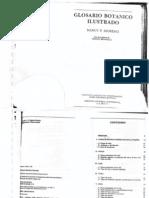 Glosario Botanico ilustrado.pdf