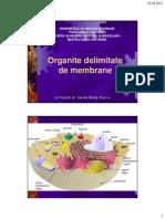 6.Organite Delimitate de Membrane_2012 v02