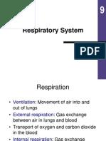 9. Sistem Respirasi
