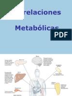 Integracion metabolica-2