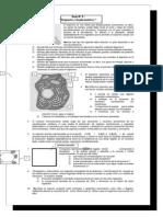 Guía de estudio organelos citoplasmáticos
