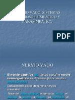 Nervio Vago y Parasimpatico
