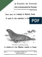 Extincion de La Foca en Yucatan