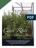 Ceara Roses Australia Hydrop