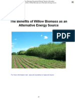 Willow as a Fuel