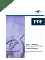 Manual Geor Projetos Internos 20090128