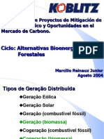 Alternativas Bio Energetic As e Forest Ales