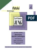 C.G.jung - Descrierea Tipurilor Psihologice - ED. ANIMA