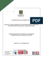 Informe Nov Final Dc2012