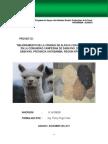 Alternativas Proyecto Alpaca