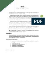 Software de Ventas y Facturación NILUX