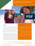 Anemia Peru
