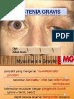 PPT MG