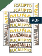 EUCALIPTO[1].docx2