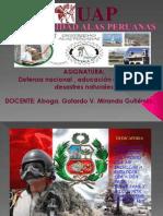 Gomez Salvatierra, Alcibiades-Defensanacional
