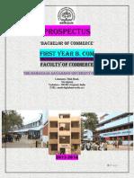 Prospectus Bcom 2013