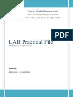 DBMS LAB FILE.docx
