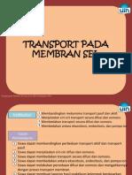 Transport Membran