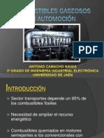 Combustibles Gaseosos - Antonio Camacho Navas