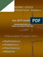 k.5 Pyogenic Cocci (Terbaru)