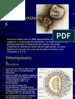 ORTHOMYXO 09