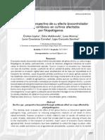 Bacillus Spp, Perspectiva de Su Efecto Biocontrolador Mediante Antibiosis en Cultivos Afectados Por Fitopatogenos